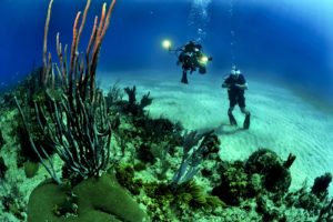 Florida: Museum of underwater art will help restore the coral reef