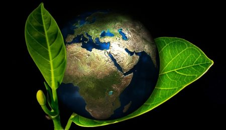 Simple Ways to Help the Environment