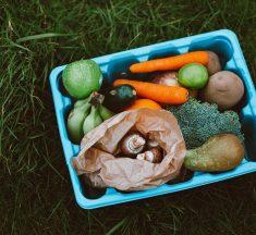 Is Plastic Safe for Food Storage?